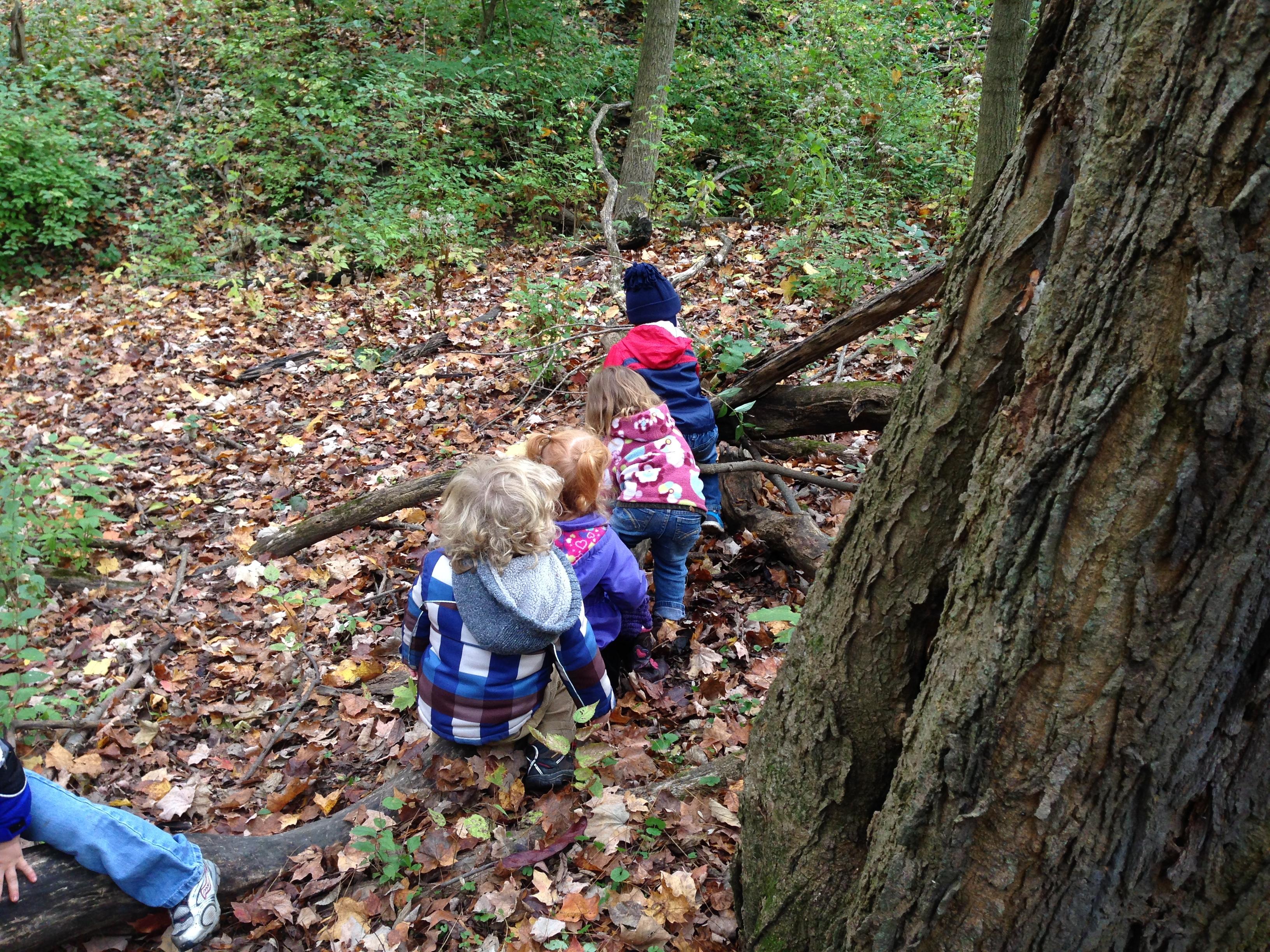 Joyful Outdoor Collaboration